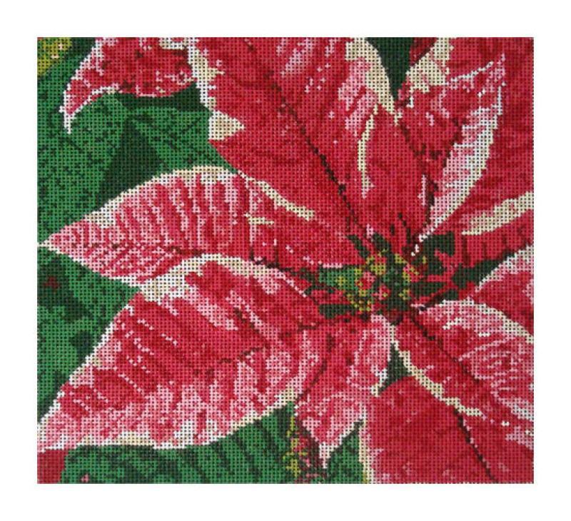 DH3624 - Poinsettia