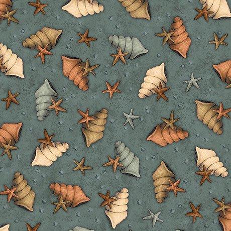 Adrift Shells and Stars