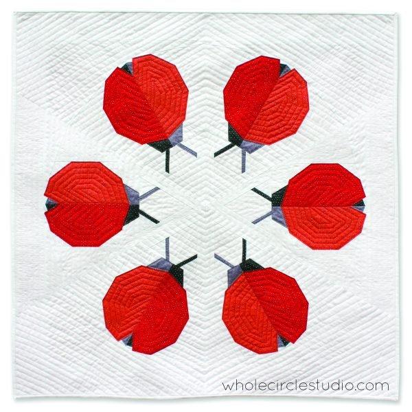 Ladybug Loop Kit