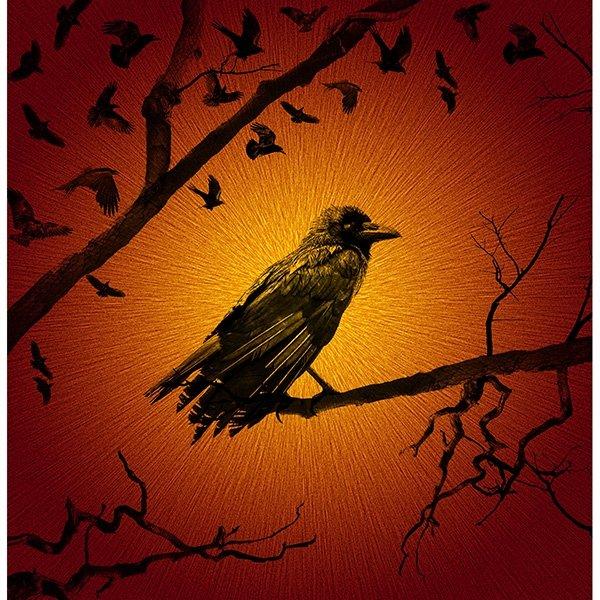 T4864-67 Flame Crow Panel 43-1/4 x 43-3/4 | Haunted Halloween Collection | Hoffman Fabrics