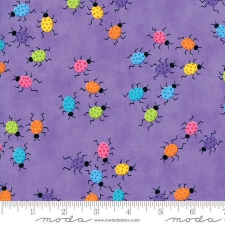 Frolic - M22315-15 Purple