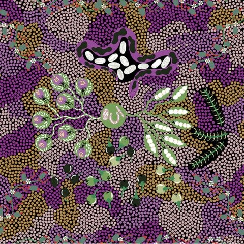 Bush Tucker Dreaming-Purple