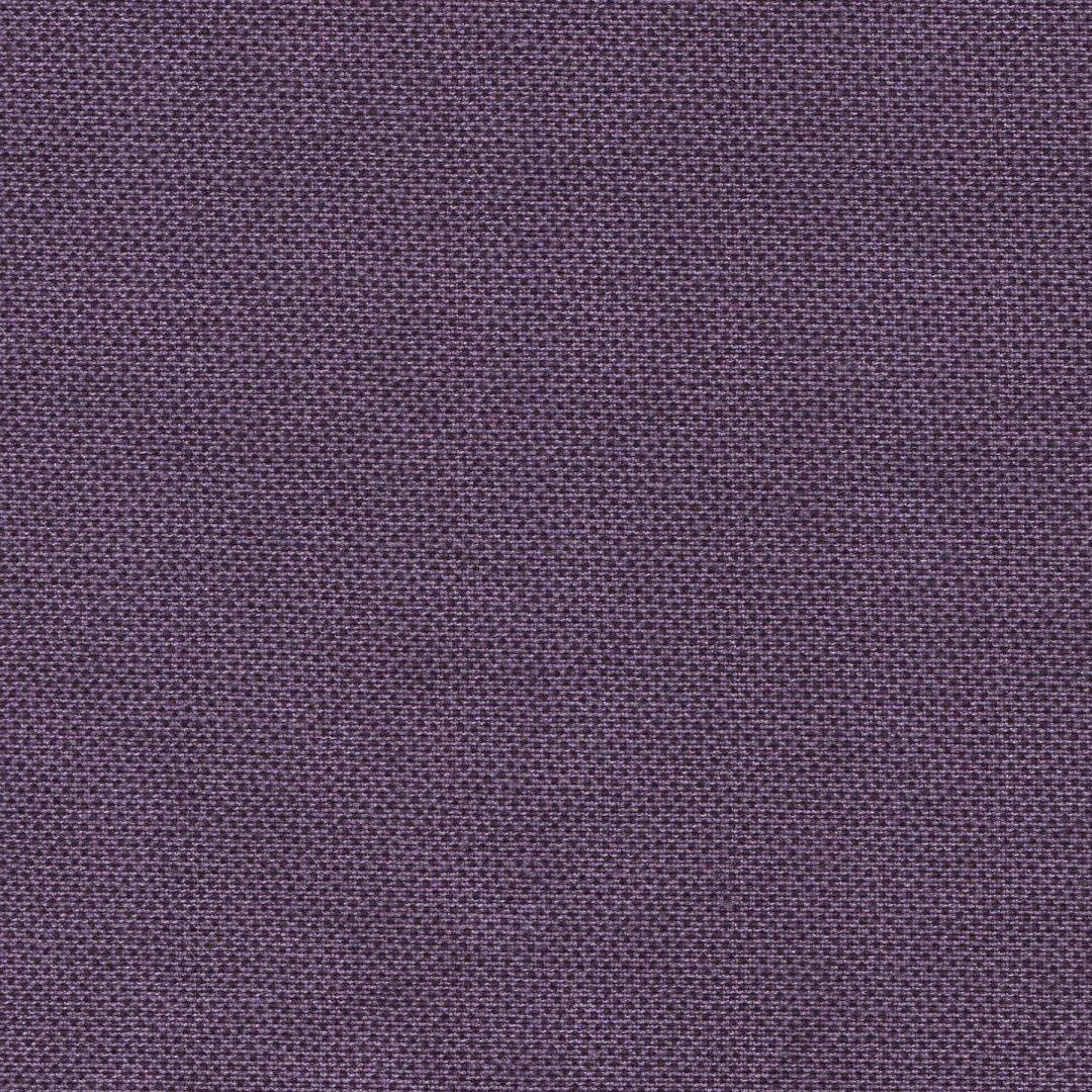 Pindot - Purple - DHER 1503