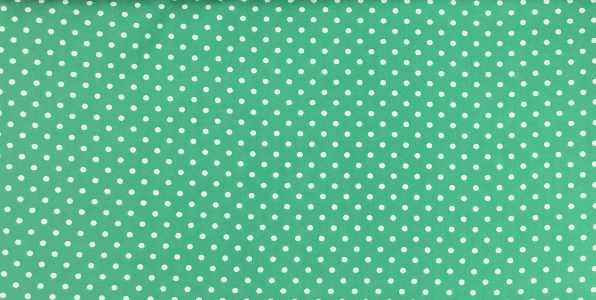 Adaman Coast - Green Day - White Dot