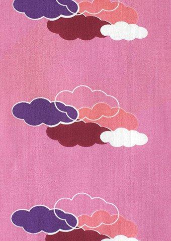Saffron Craig Valley View Pink Clouds at Night