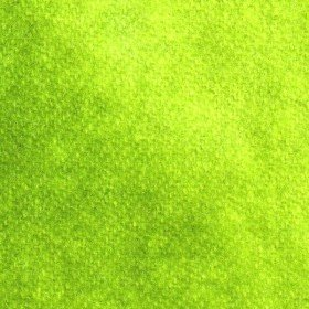 Wool Fabric - Spring Green
