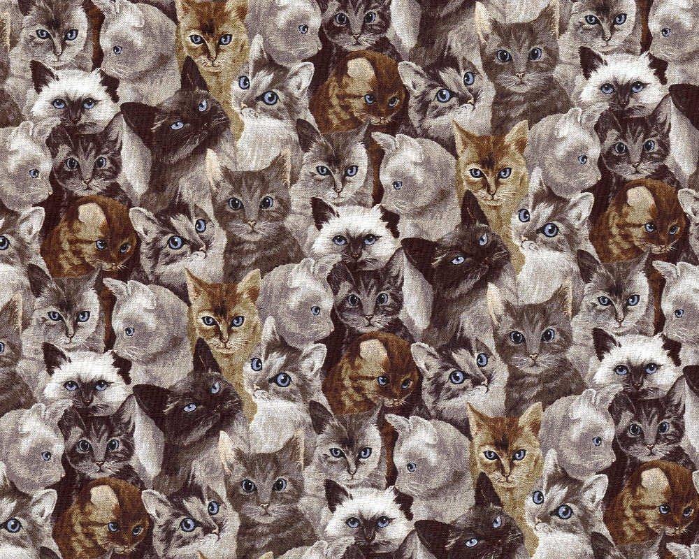 My Pet Family - Cat Faces