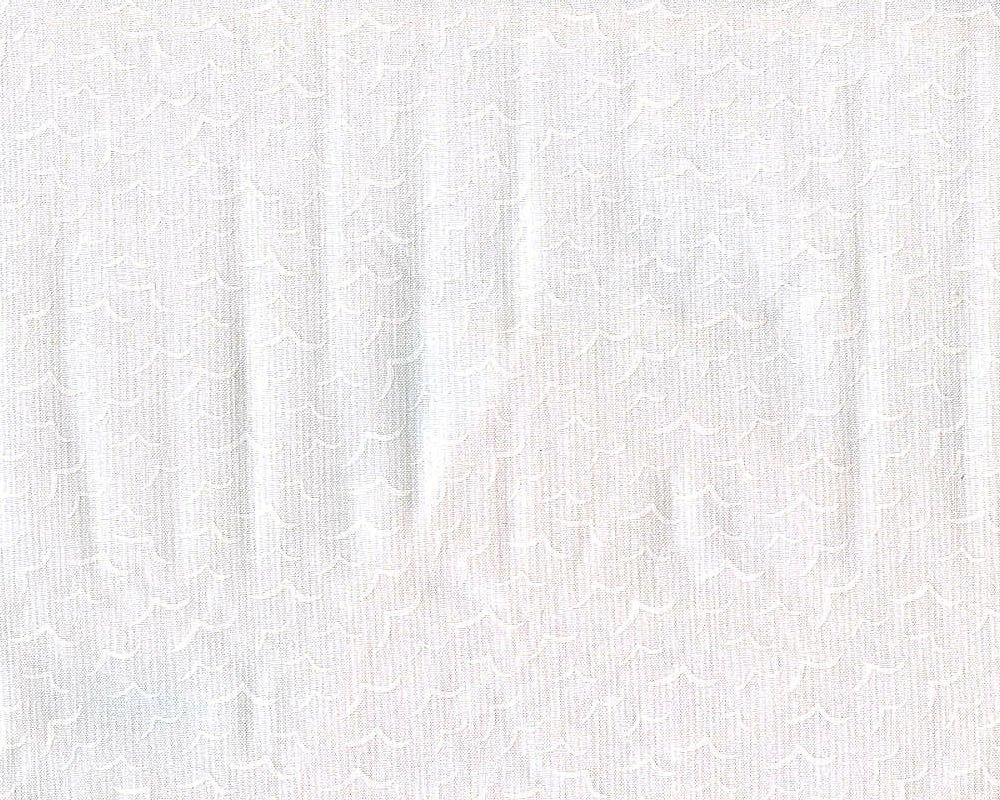 Morning Mist IV (White on White)