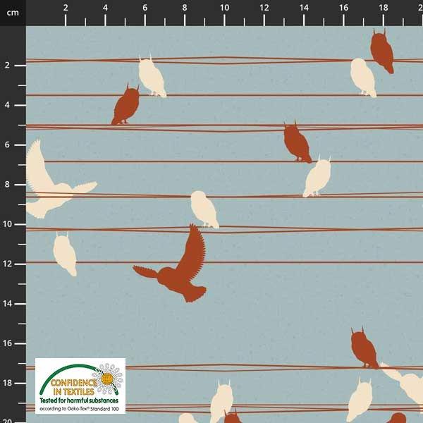Birds Move Wire Sky