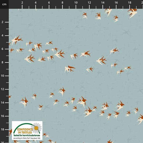 Birds Move Migration Sky