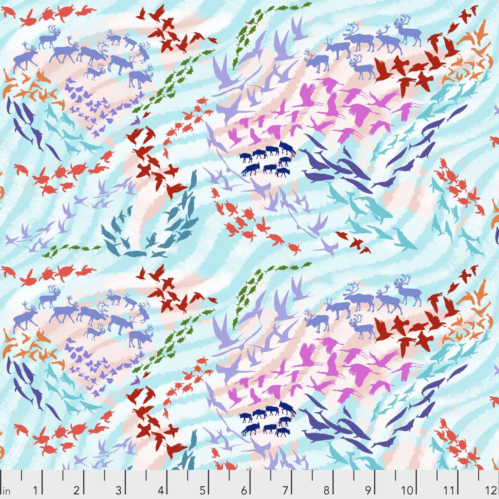 Migration Migratory Map Aqua