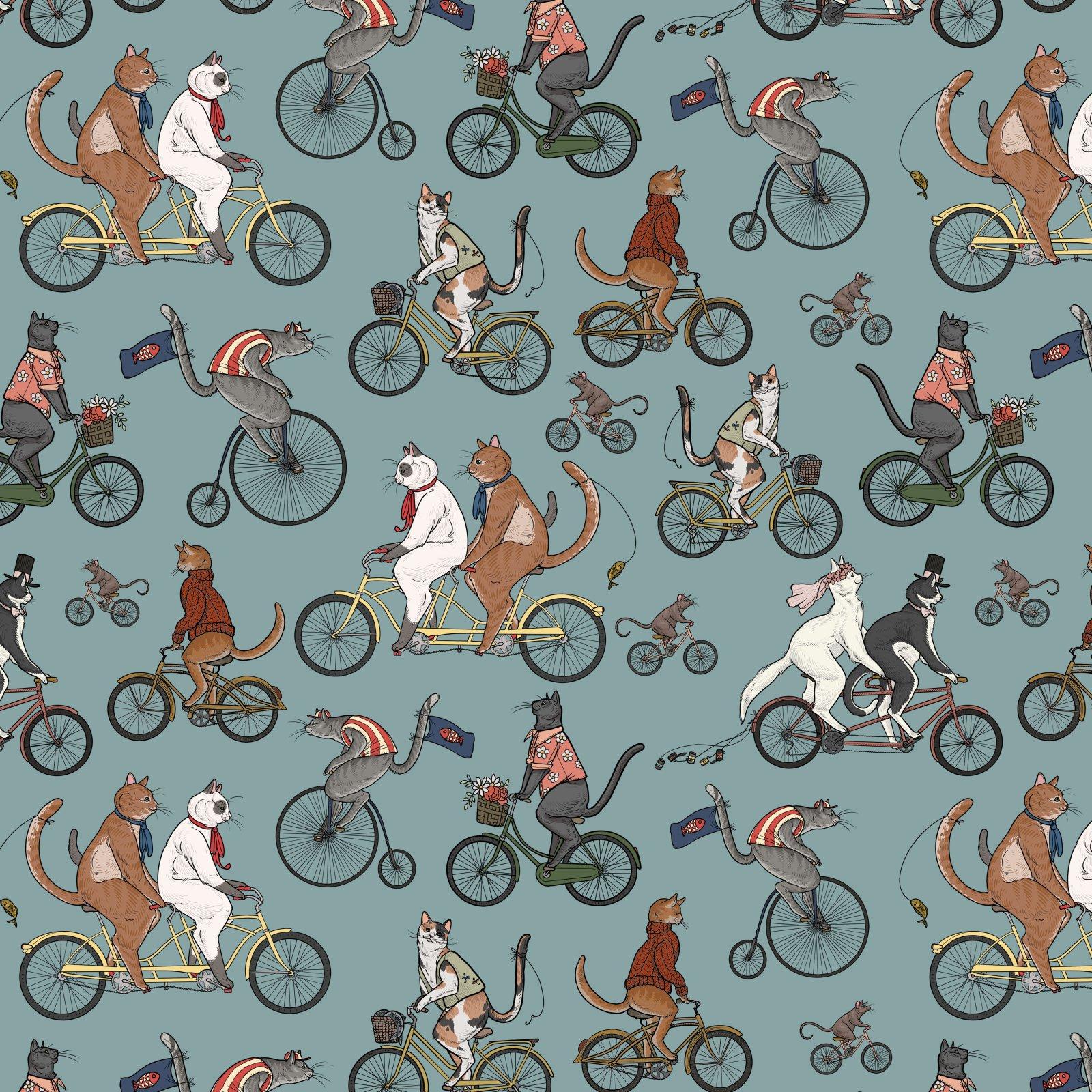 Cat Tales Bicycle Race Aquifer