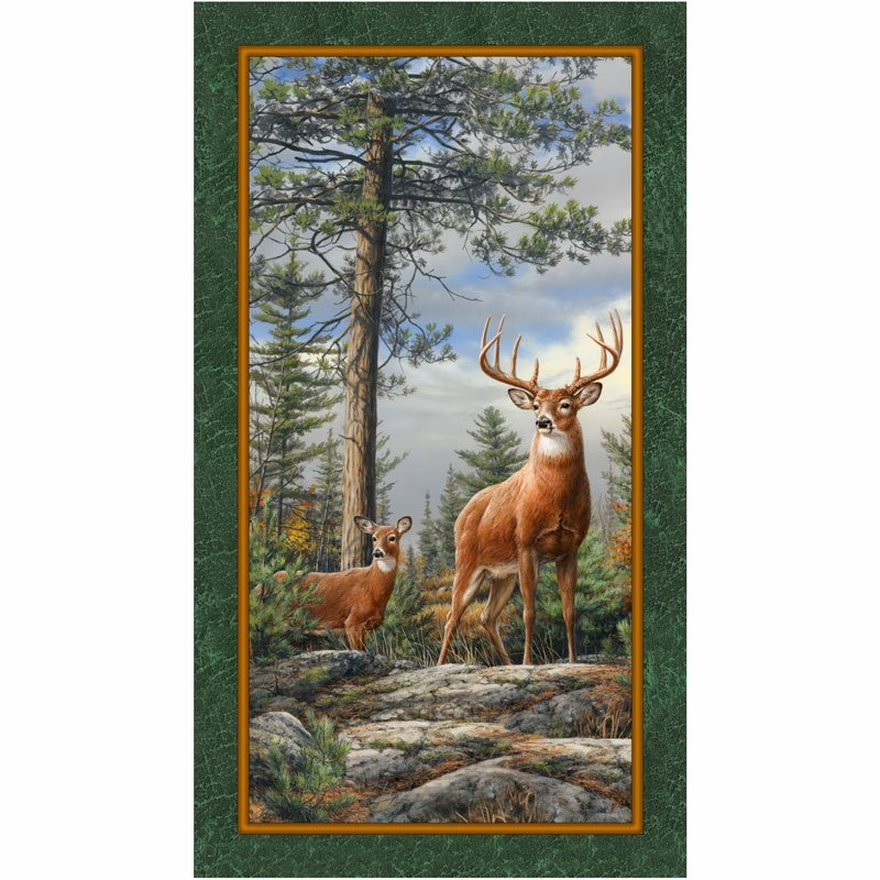 Deer Mountain Panel