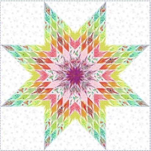 PRE ORDER Tula Pink Daydreamer Imagination Quilt Kit