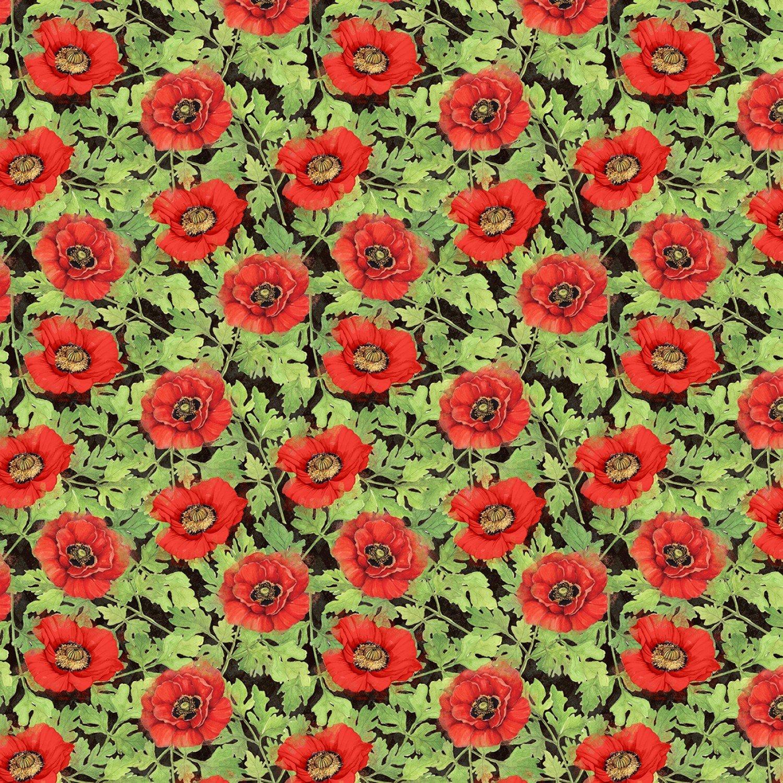 Harlequin Poppies 31-937