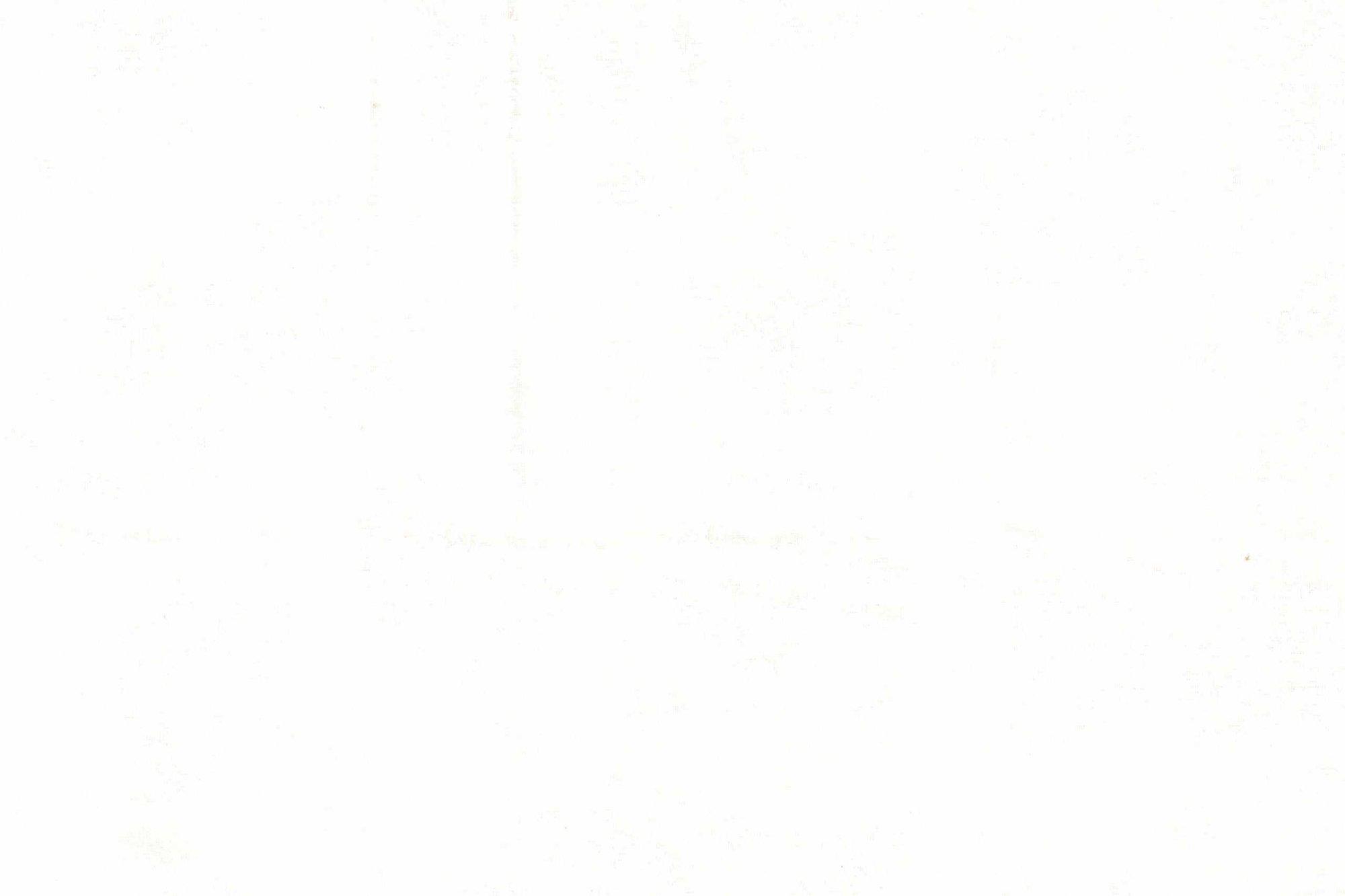 D S-P 47748 WHITE ON WHITE CIRCLE-DOTS