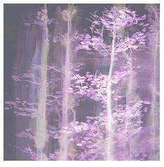FROND DESIGN 135-0202 GENESIS TREE WINTER