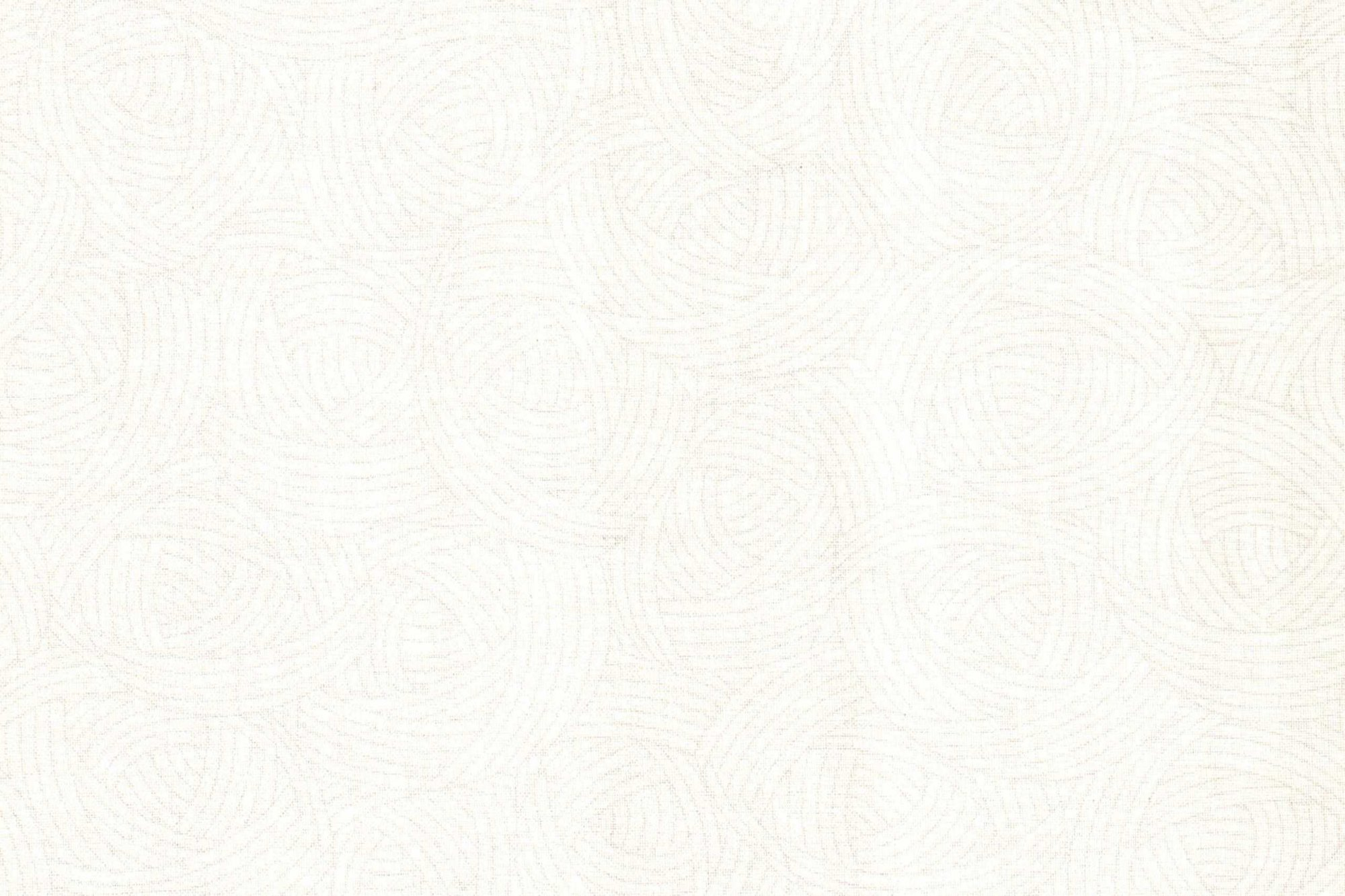 QUILTING TREASURES WHITE LOLA TEXTURES 1649-22926 Z