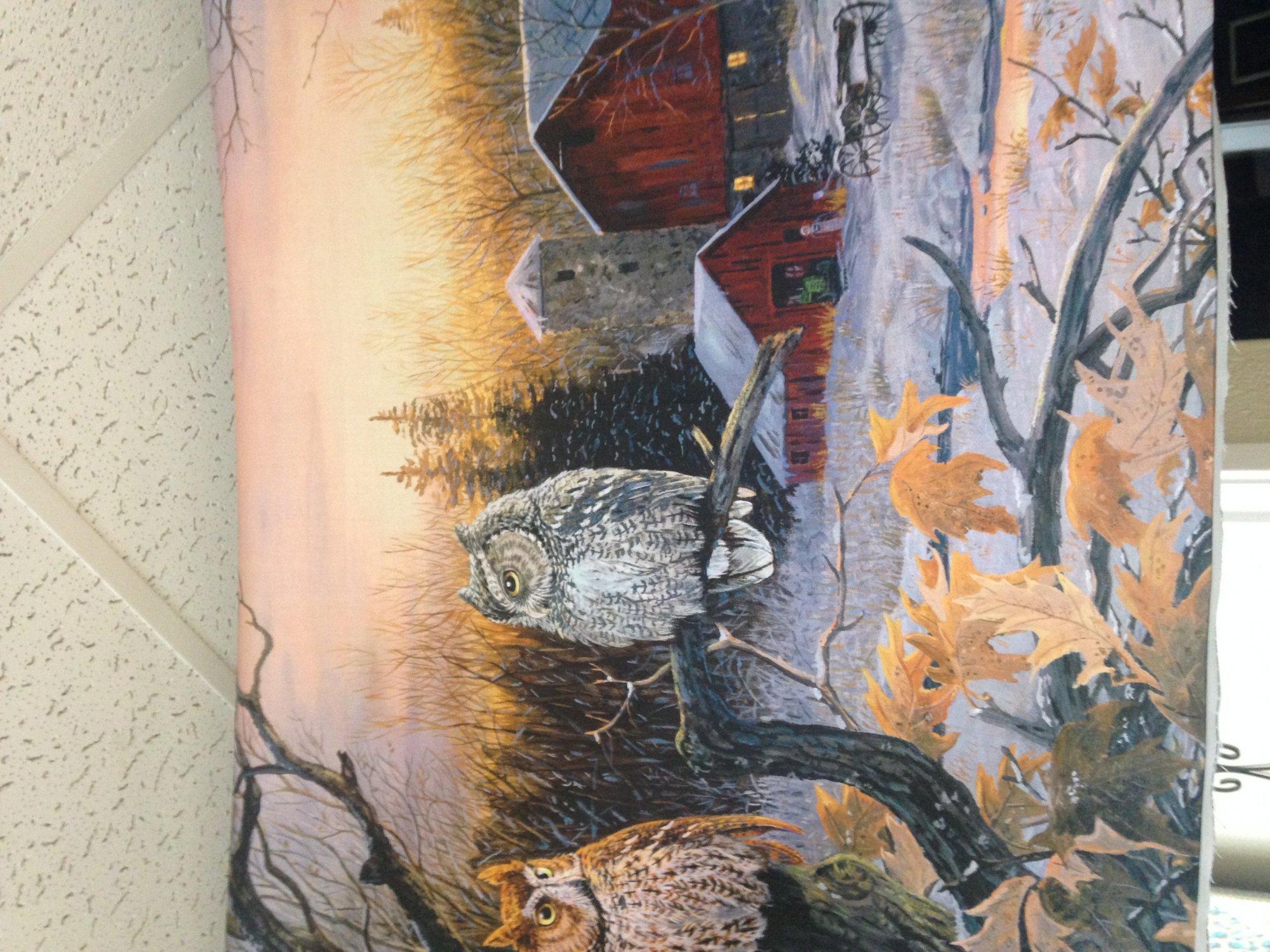 owl - panel