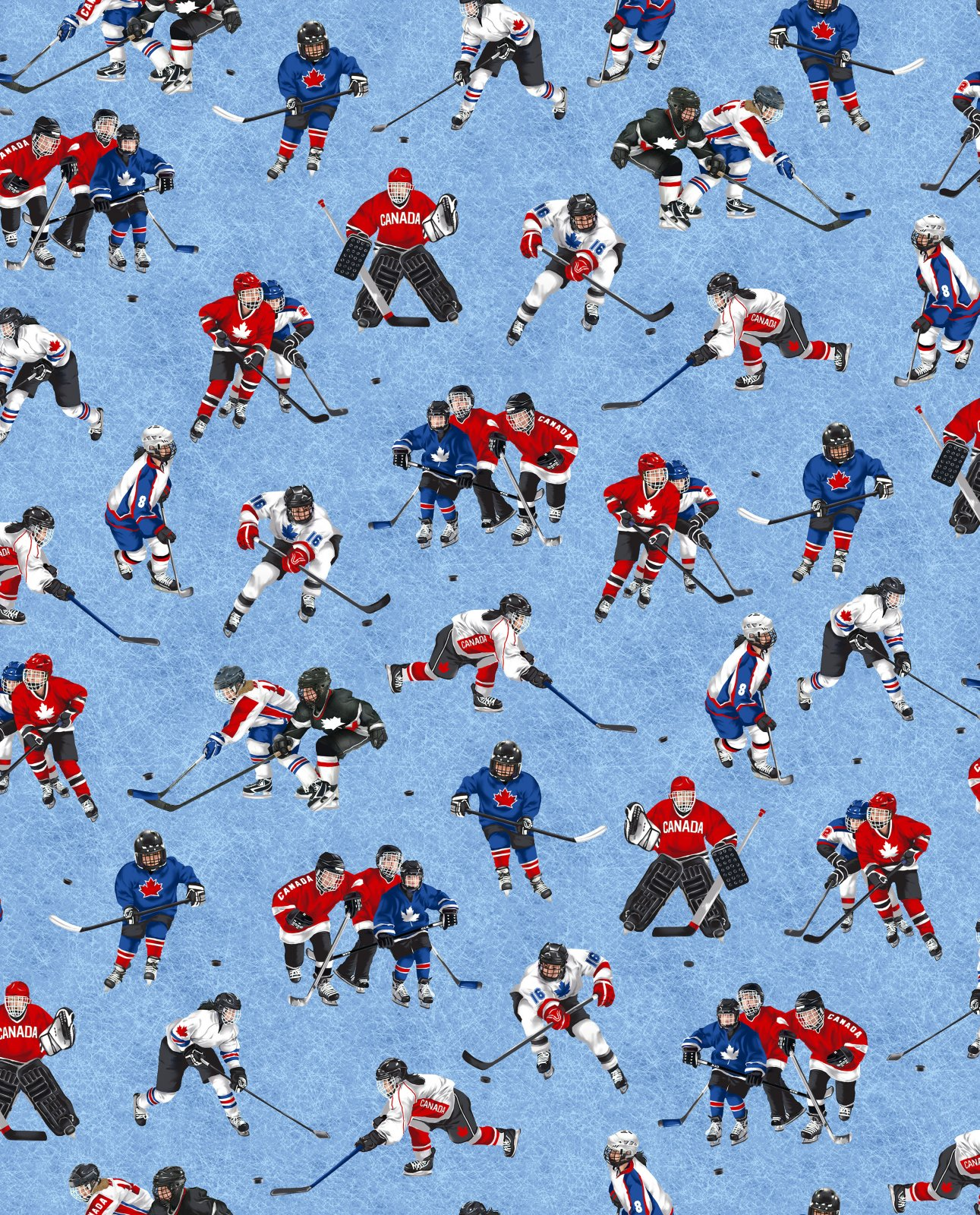 CANADA'S GAME 16955/88 - ICE