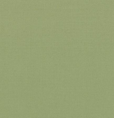 Bella Solids Circa Celadon 9900 172 Moda