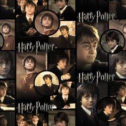 Harry Potter Harry