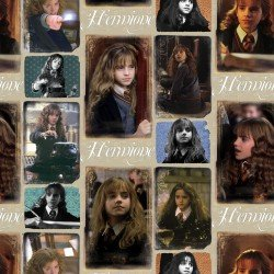 Harry Potter Hermione