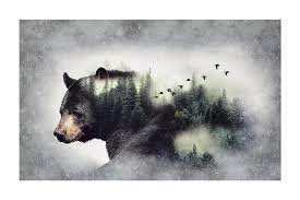 Call of the Wild Digital Print Forest (Bear)