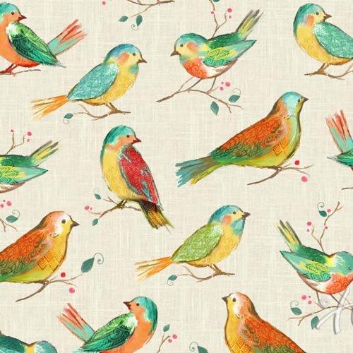 Hoffman All A Twitter Birds