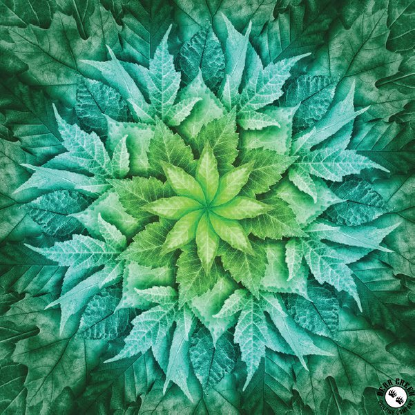 Hoffman Fabrics Dream Big Leaf Panel Mint