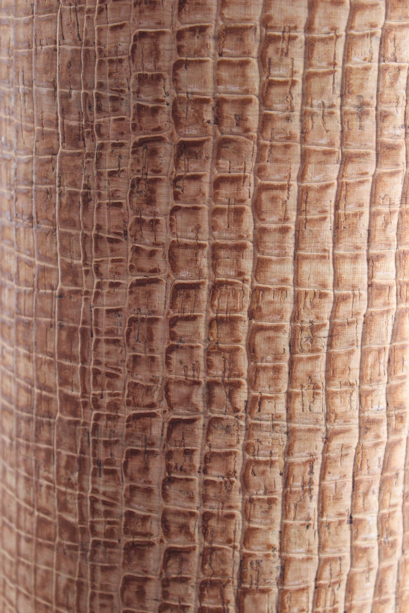 Caiman Brown Cork Fabric (18x18)