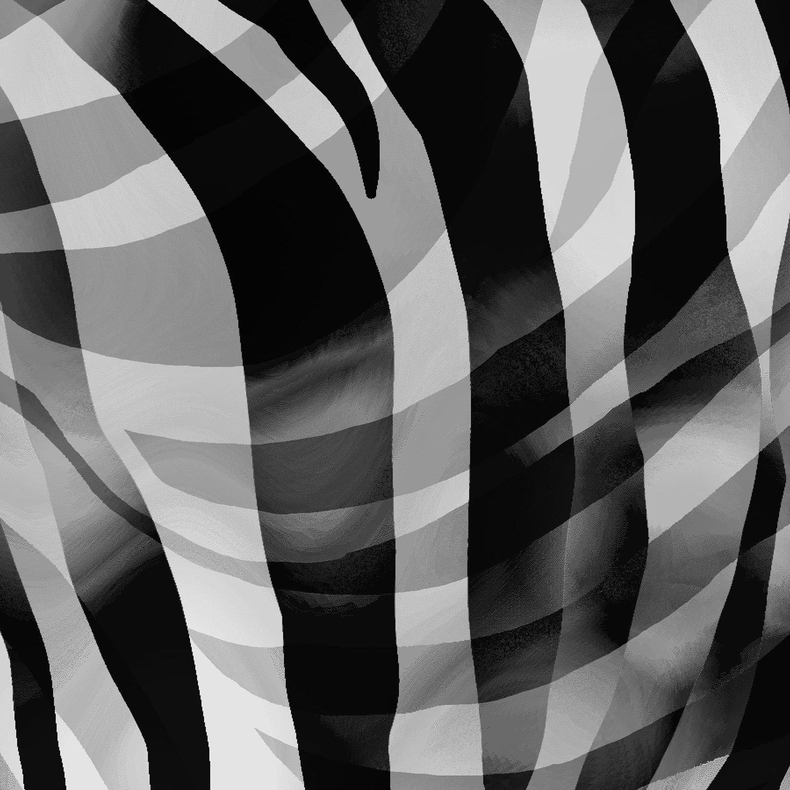 Henry Glass - Zebra Skins  - Black and White Zebra