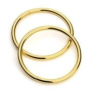 2 Gold O ring