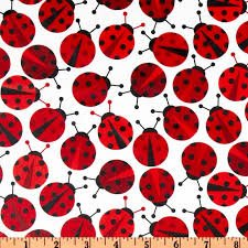 Urban Zoologie Lady Bug