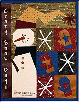 Crazy Snow Days Book