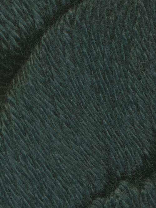 Araucania Alpaka Reina