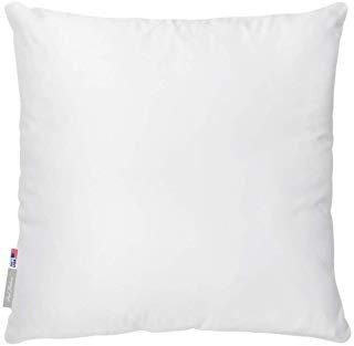 Decorative Pillow Forms 14X14