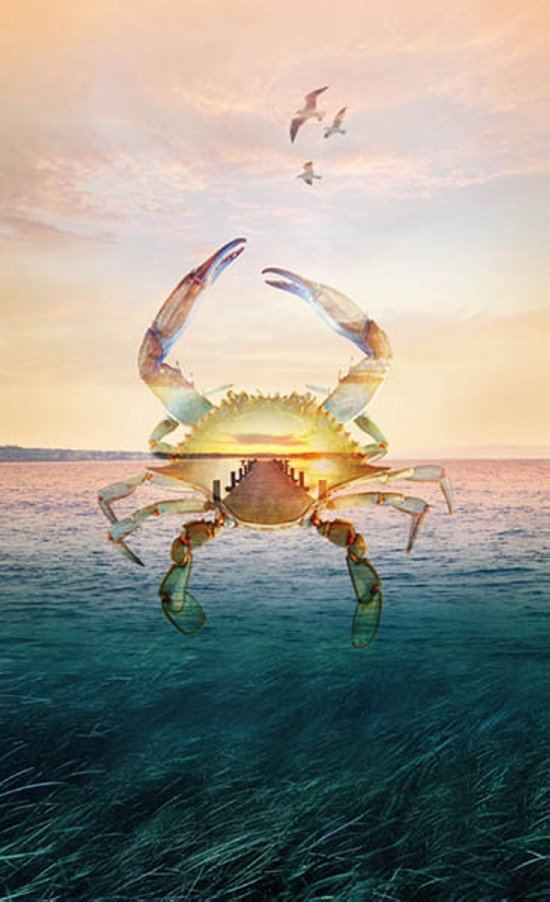 Call of the Wild Seaside Crab Panel