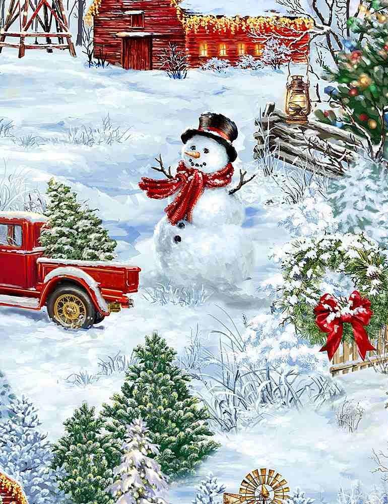 COUNTRY CHRISTMAS - DONA C7592