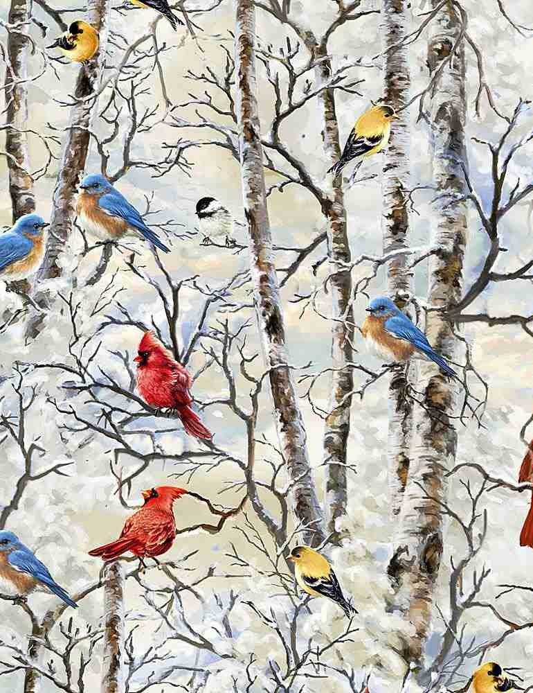 WINTER BIRDS - DONA C7593