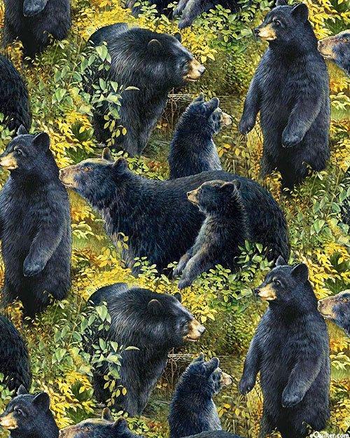 Basic Black Bear Packed