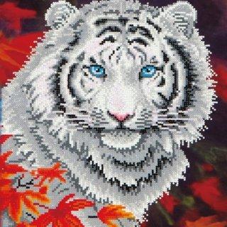 DDotz White Tiger in Autumn