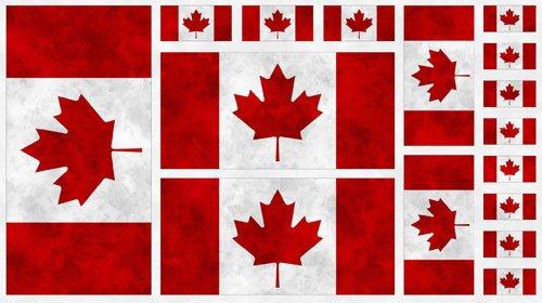 Canadianims Panel