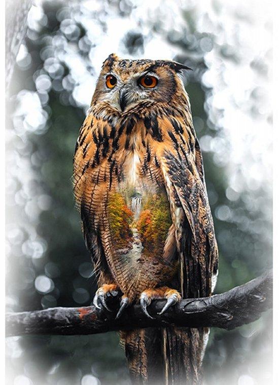 Call of the Wild Autumn Owl Panel