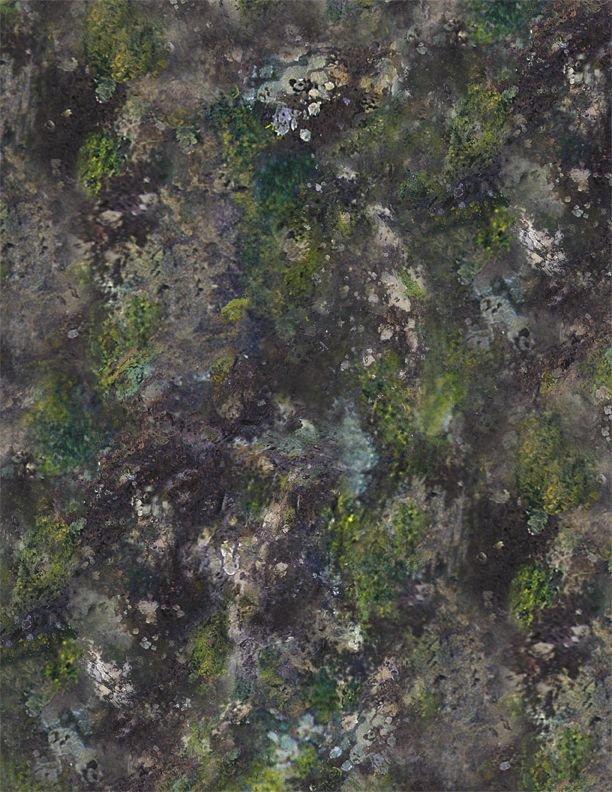 Wilmington Prints - A New Adventure - Moss & Rocks Texture - 3034-10141-974 - Green/Black