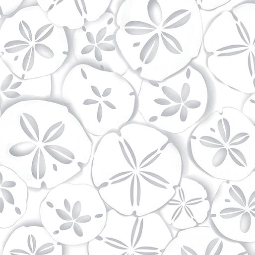 Sand Dollars (White Out)