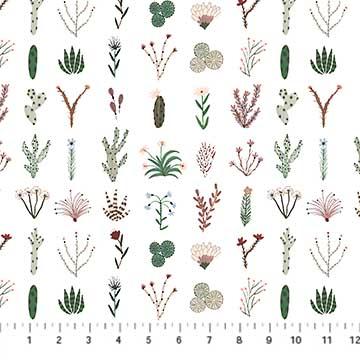 Desert Wilderness - Plants on white