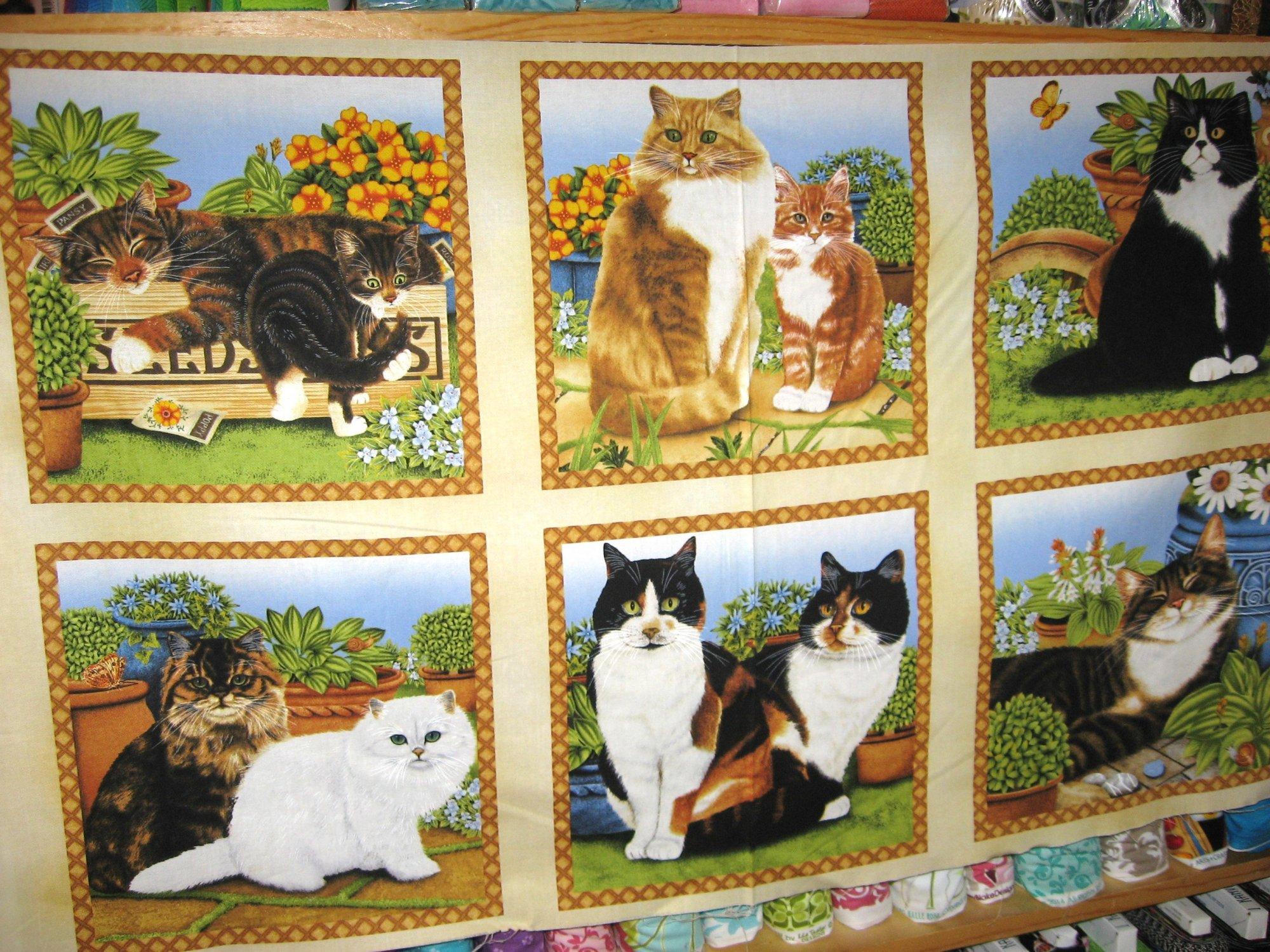 Feline Cats Panel