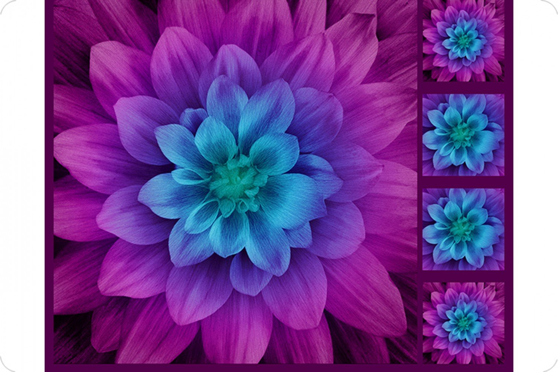 Hoffman Floral Cuddle Panel 45 x 45 & Pillow Panels 10 x 10 - Aurora