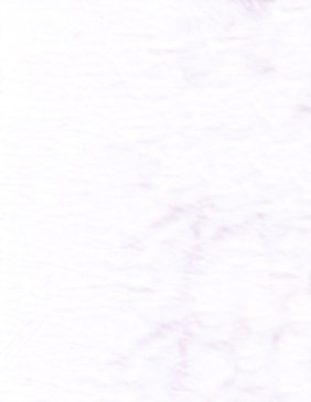 Lava Solids  Basic - 1519 Purple
